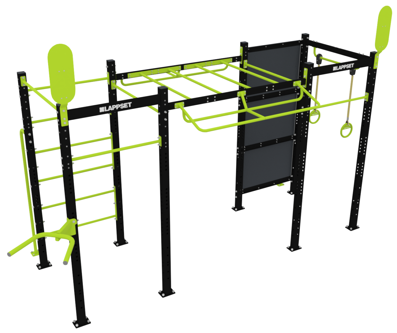 Functional Fitness Rig M